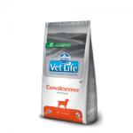 Farmina Vet Life Convalescence Canine Dog Foo...