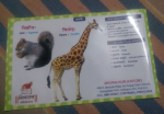 SANSKRIT BOOK FOR SWEET BABIES- ANIMALS