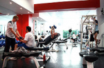 Consultancy in setting up Fitness Centers for...