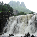 Malshej Ghat- Nature Photography
