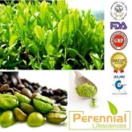 Perennial Green Coffee Extract
