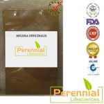 Perennial Melissa Officinalis Extract Powder