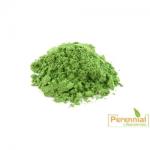 Perennial Green Tea Leaf Extract