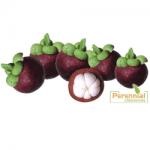 Perennial Mangosteen Extract