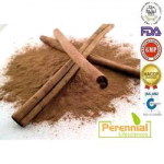 Perennial Cinnamon Extract Powder