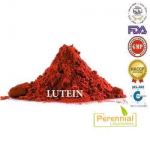 Perennial Lutein Extract Powder