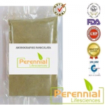 Perennial Andrographis Paniculata Extract