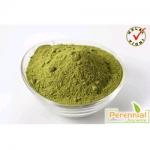 Perennial Moringa Oleifera Extract